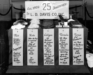 L.D. Davis 25 years, animal glue