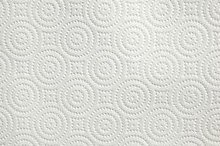 Quilted paper towel