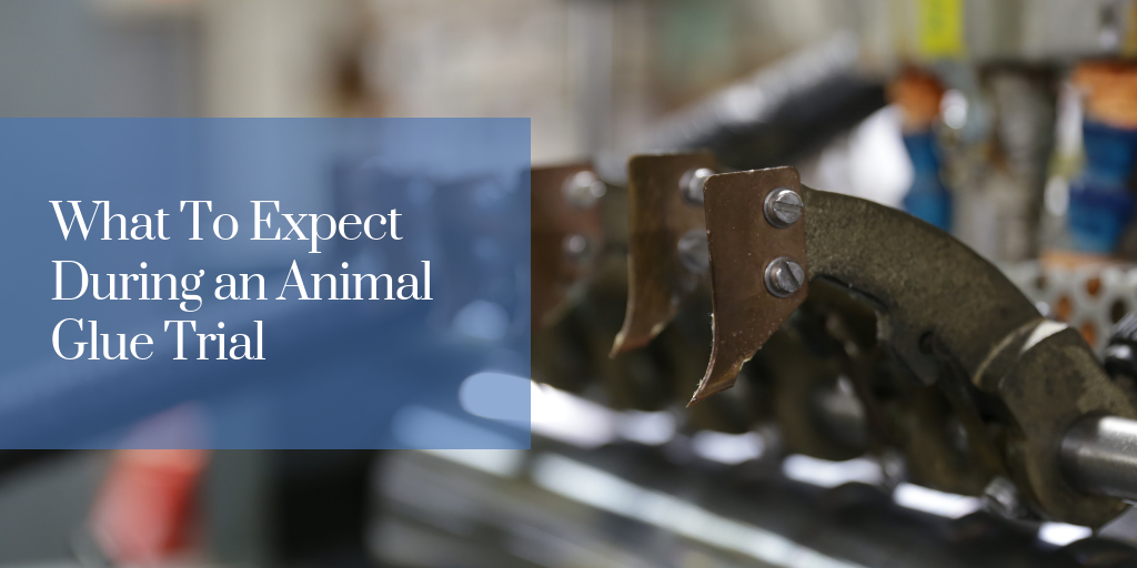 What To Expect During an Animal Glue Trial